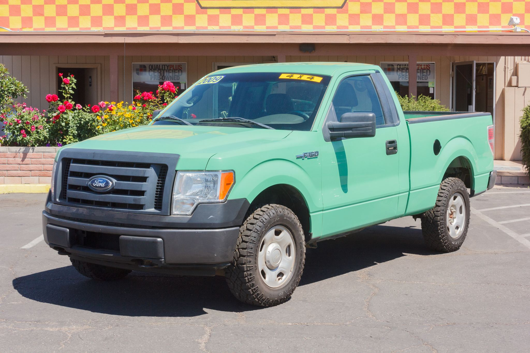 Photo of 2009 Ford F150 4WD Reg Cab XL Stone Green Clearcoat Metallic